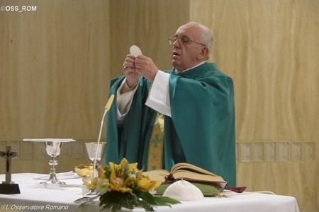 Papa: o mundo não entendeu o caminho da paz