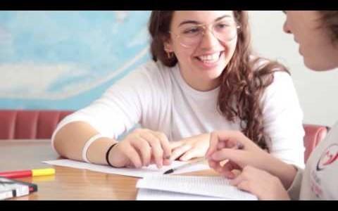 Rede ICM de Educação e Assistência Social - Marca Institucional